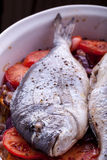 Sea Bream Spanish Style Baked Royalty Free Stock Image