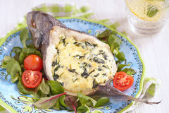 Sea Bream stuffed with spinach Royalty Free Stock Photos