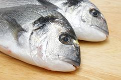Sea bream on wooden plate Stock Images
