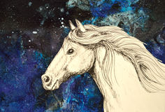Sea Breeze - white horse head. Original mixed media collage of a horse drawn in pencil and ink Royalty Free Stock Photography
