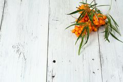 Sea buck thorn berries, Hippophae rhamnoides, on wooden board Stock Photo