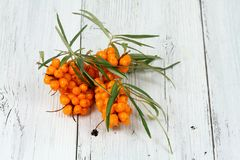 Sea buck thorn berries, Hippophae rhamnoides, on wooden board Stock Photography