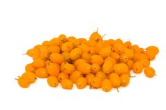 Sea-buckthorn. Pile of sea buckthorn berries isolated on the white background Stock Image