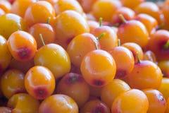 Sea-buckthorn berries. Berries of sea-buckthorn berries with droplets of water Royalty Free Stock Image