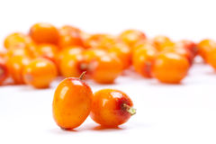 Sea-buckthorn berries Stock Photography