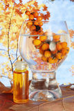 Sea-buckthorn berries and oil Stock Images