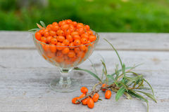 Sea buckthorn berries in vase on wooden table Royalty Free Stock Images