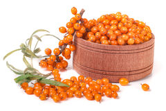 Sea-buckthorn berries in a wooden bowl with sprig isolated on white background Stock Photos