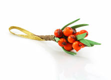 Sea-buckthorn Bunch Isolated on White. Background Stock Photo