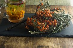 Sea-buckthorn bushes and a beverage from sea buckthorn stands on a slate board.  Stock Image