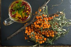 Sea-buckthorn bushes and a drink of sea-buckthorn mint and barberry is on a slate. Sea-buckthorn bushes and a beverage from sea-buckthorn stands on a slate board Royalty Free Stock Photo