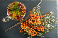 Sea-buckthorn bushes and a drink of sea-buckthorn mint and barberry is on a slate. Top view Stock Photo