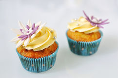 Sea buckthorn cupcakes. Two flowery yellow-blue cupcakes on white background Royalty Free Stock Photography