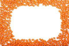 Sea buckthorn. Frame of ripe fresh berries isolated on white background with copy space for your text. Top view Stock Image
