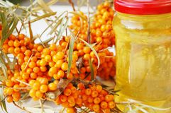 Sea-buckthorn fruits and honey royalty free stock photography