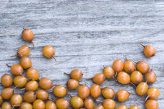 Sea buckthorn (Hippophae rhamnoides) barries. Stock Photography