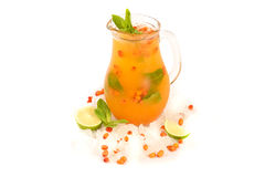 Sea Buckthorn Lemonades. Sea buckthorn lemonade with ice in a jug on white background Stock Images