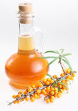 Sea Buckthorn Oil Stock Images