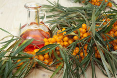 Sea buckthorn oil. Branch with berries of sea buckthorn and a pitcher of sea buckthorn oil Royalty Free Stock Images