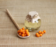 Sea buckthorn oil in glass jar Royalty Free Stock Images