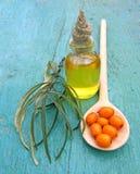 Sea buckthorn oil in jar Stock Images