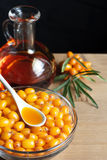 Sea buckthorn oil Royalty Free Stock Image
