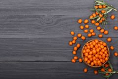 Sea buckthorn. Ripe fresh berries in bowl on black wooden background with copy space for your text. Top view Royalty Free Stock Photos