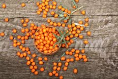 Sea buckthorn. Ripe fresh berries in bowl on old wooden background with copy space for your text. Top view Stock Image