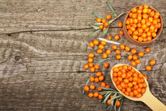 Sea buckthorn. Ripe fresh berries in bowl on old wooden background with copy space for your text. Top view Royalty Free Stock Photography