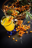 Sea buckthorn tea Royalty Free Stock Image