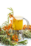 Sea buckthorn tea Stock Photos