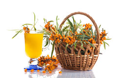 Sea buckthorn tea Royalty Free Stock Photo