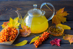 Sea buckthorn tea and fresh berries of sea buckthorn on the table Royalty Free Stock Photos