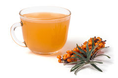 Sea buckthorn tea with a sprig isolated on  white background Royalty Free Stock Images