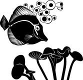 Sea butterfly fish Royalty Free Stock Images
