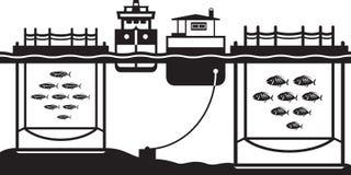 Sea cage fish farming. Vector illustration Royalty Free Stock Photography