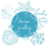 Sea is calling. Marine background with seashells, corals and starfish Stock Image