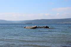Sea and calm skies and gulls Royalty Free Stock Photo