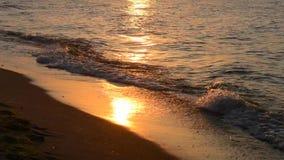Sea calm, small waves, sandy beach, sunset. Sun path on the sand stock video