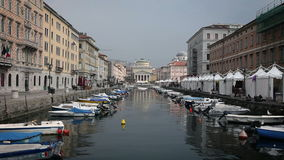 Sea canal in Trieste, full of parked boats stock video footage