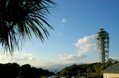 Sea Candle. Tower in Enoshima island in Kamakura, Japan with a palm tree in the front Royalty Free Stock Image