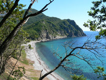 Sea and Cape. Look through branches of trees on sea, beach and cape. Russian Far Easr, Primorye, state nature reserve Lazovsky, Japanese sea, Uglovaya bay and Stock Images