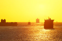 Sea cargo transportation Stock Image