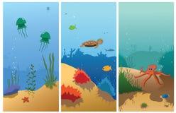 Sea cartoon. Illustration of sea wild animals Royalty Free Stock Image