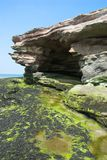 Sea Cave. Natural sandstone cave with green seaweed in the foreground Stock Photography