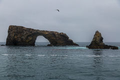 Sea Cave and Arch. Sea Cave and natural arch at Anacapa Island in California Stock Images