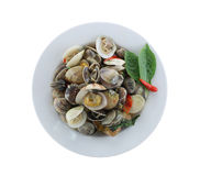 Sea clams or RIDGED VENUS CLAM of Stir sauce in white dish isola. Ted on white background and have clipping paths to easy deployment Stock Photo