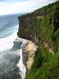 Sea cliff with forest Royalty Free Stock Images