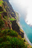 Sea cliff ( Madeira) Royalty Free Stock Photo