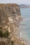Sea Cliffs. Near Napier, New Zealand. Rock strata clearly displayed Royalty Free Stock Images